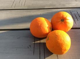 00-Naranjas