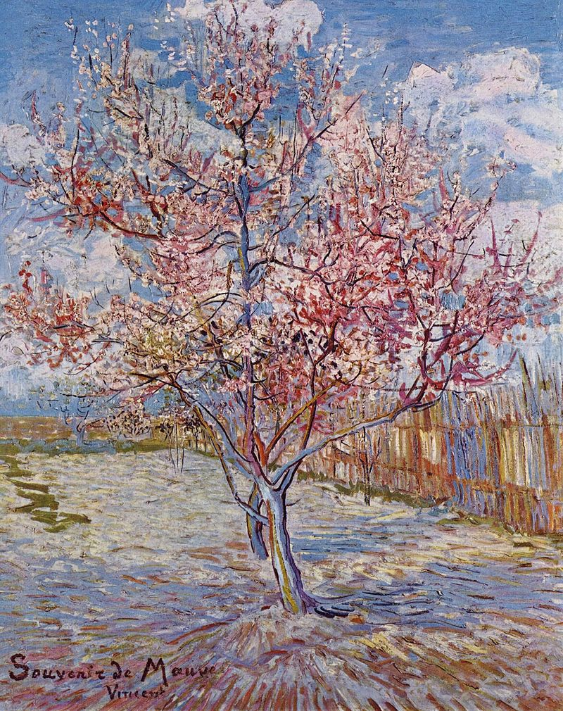 800px-Vincent_Willem_van_Gogh_113