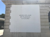 IMG_4900