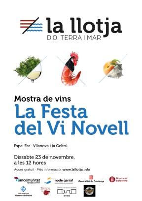 cartell_la_llotja_la_festa_del_vi_novell